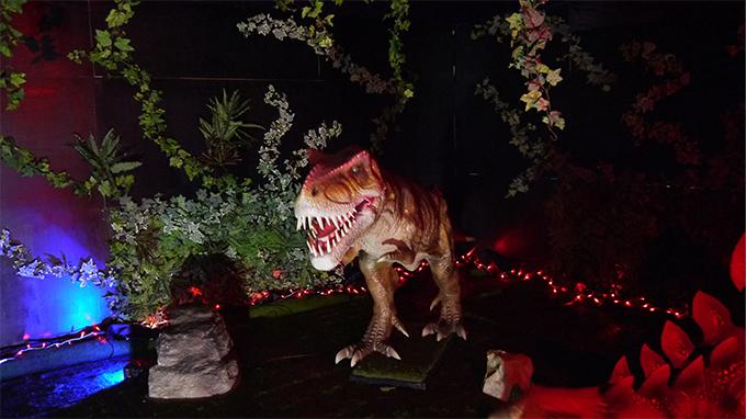 dinosaur_gallery01