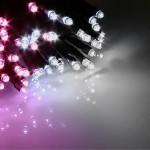 03エクセレント-ホワイトピンク